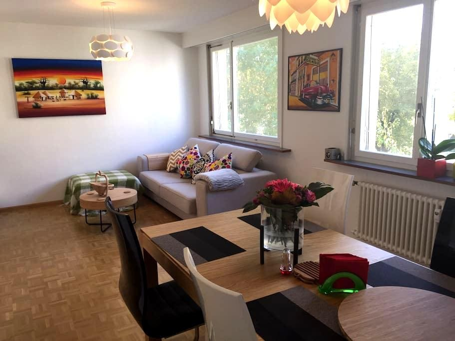 Bright&clean room 20' from oldtown - Bazel - Appartement