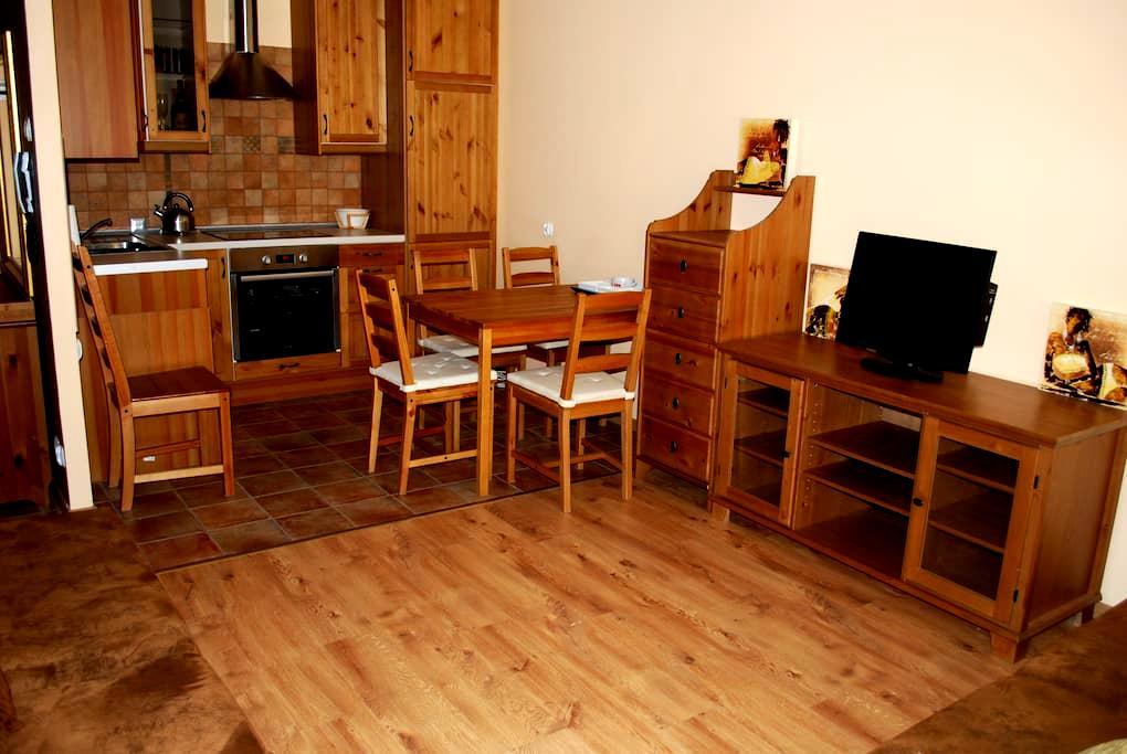 APARTAMENT  w Ciechocinku - Ciechocinek - Appartement
