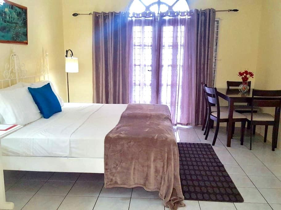 Kingston Studio Apartment - Kingston - Lejlighed