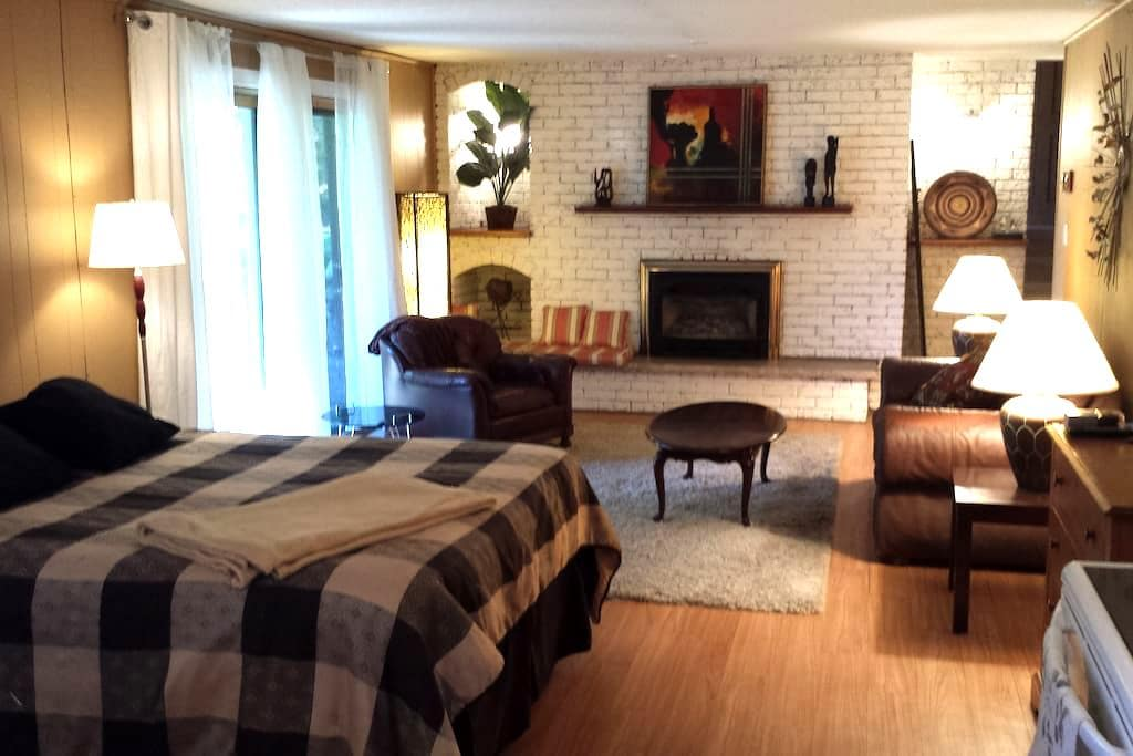 Large 2 bdrm apt 5 minutes from Downtown Kingston - Kingston