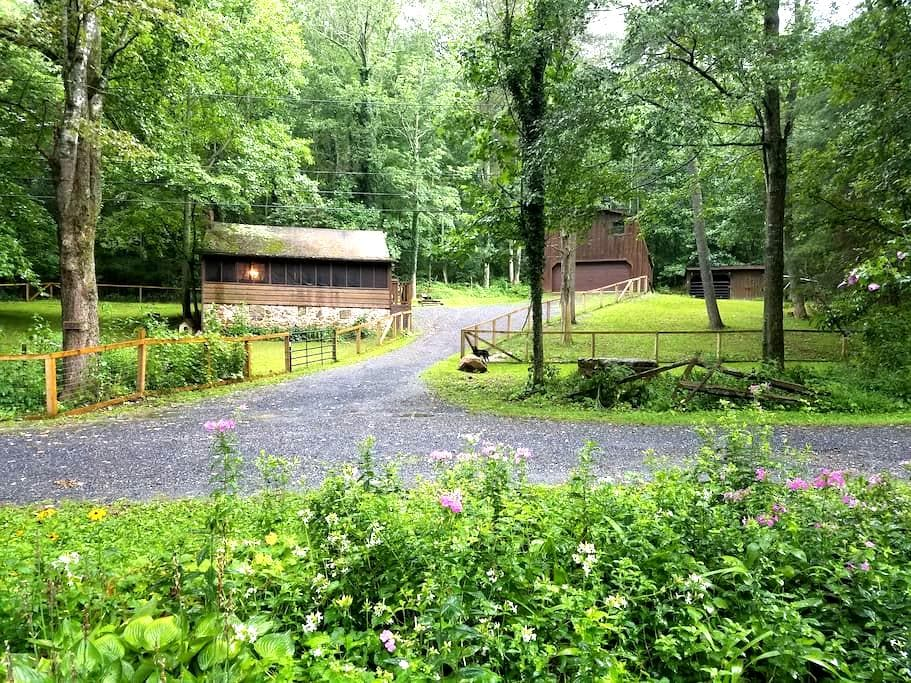 Lower Rawley Cabin-Trails & Rivers in Nat'l Forest - HINTON