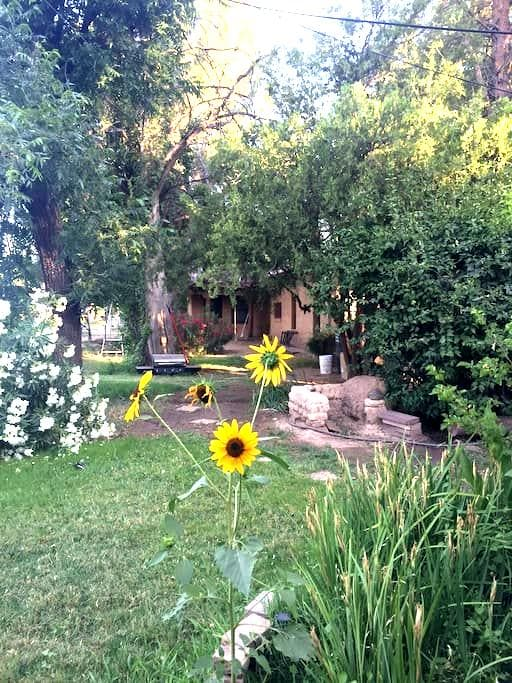 Spacious, Inviting Home in Historic Mesilla - Las Cruces - Dům