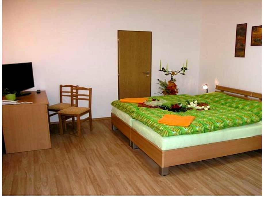 luxury room in Trenčín - Trenčín