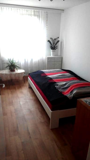 Welcome home! Cozy room close to nature and city - Luzern - Flat