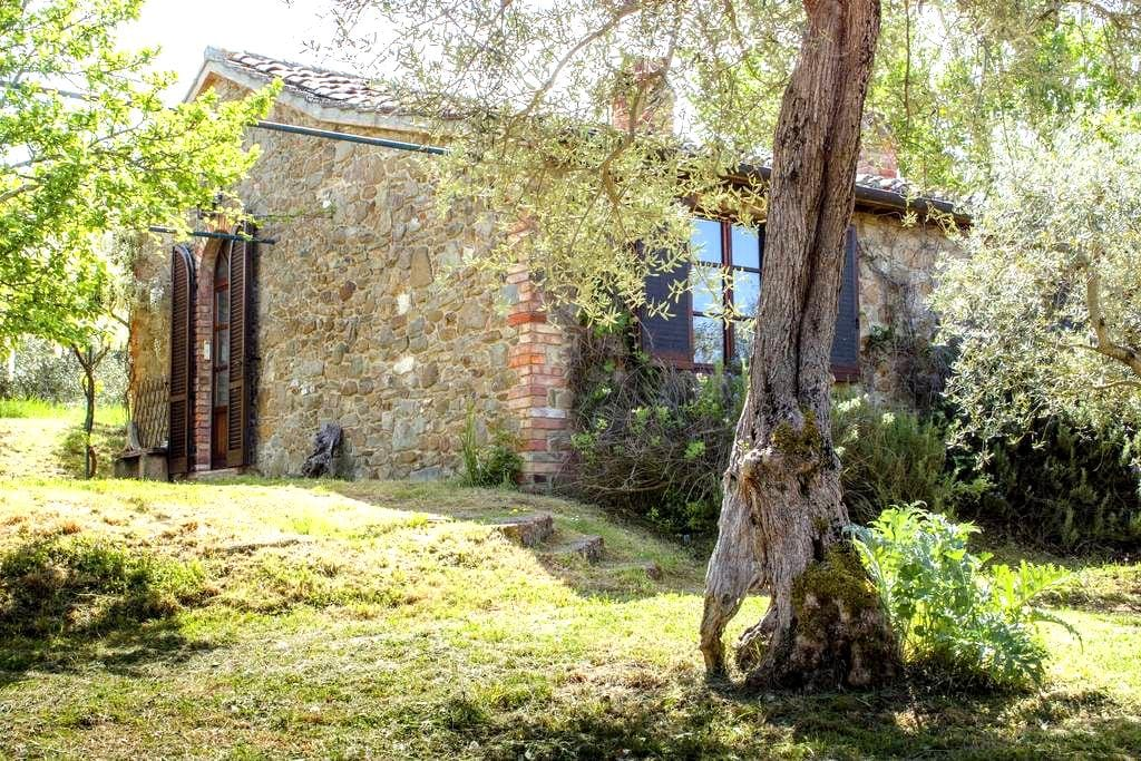 In beautiful Umbrian countryside - Paciano - House
