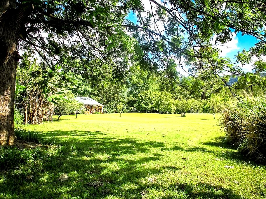 HONEYMOON COTTAGE 8 ACRES ALL YOURS - Pahala - Huis