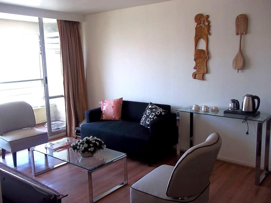 Acogedor Departamento - Cosy Apartment - Santiago - Appartement
