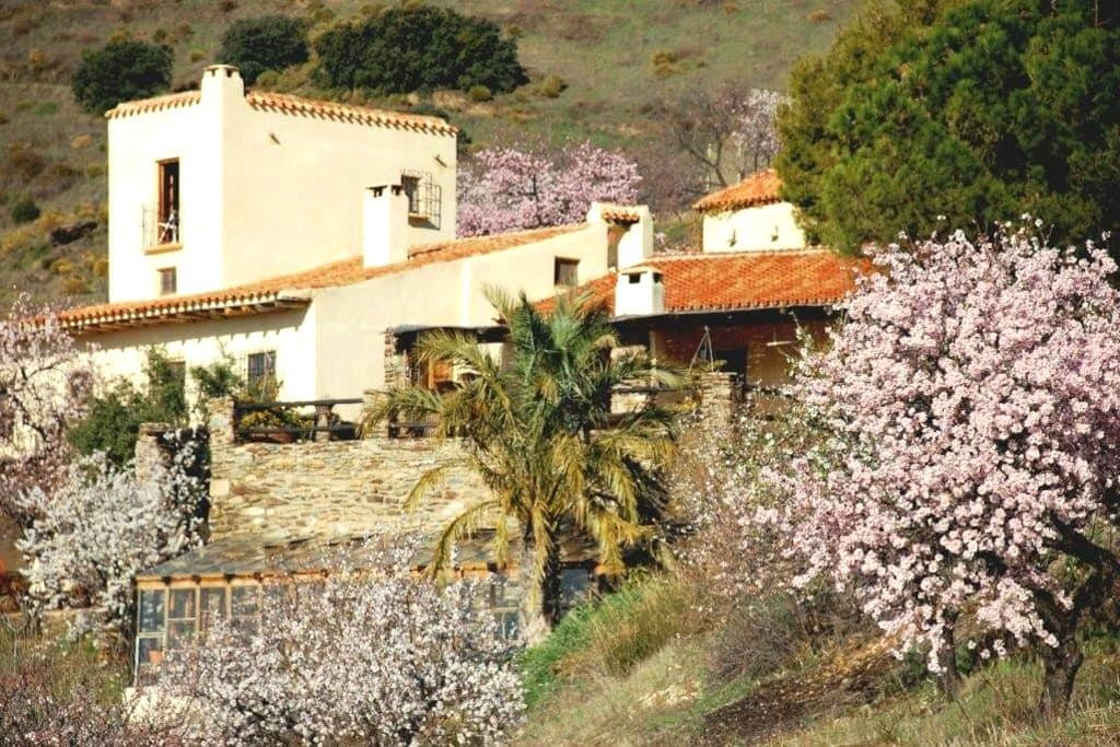 Casa Campana with pool & tennis - Alfornón