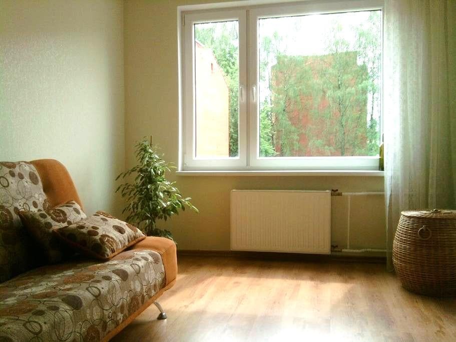 Simple flat in a quiet and beautiful town. - Ikšķile - Apartamento