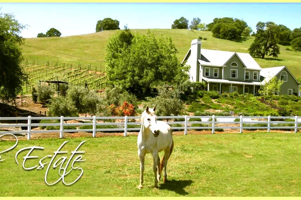 Enchanted April Inn - Pilot Hill - Bed & Breakfast
