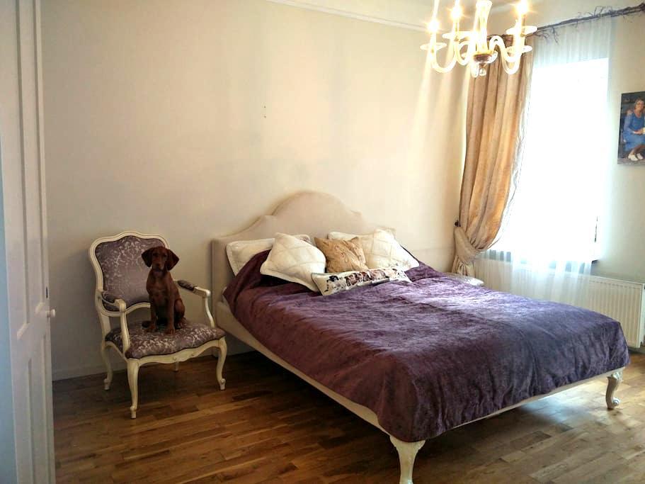 Cosy apartament in Kaunas old town - Kaunas - Wohnung