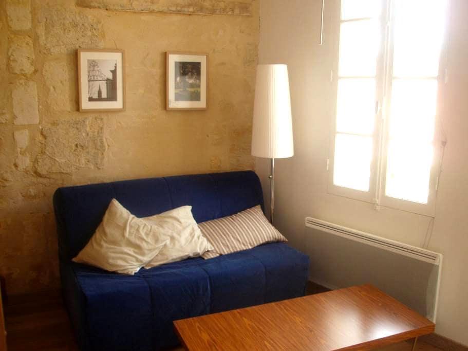 A2 Spacious apartment Saint Emilion - Saint-Émilion - Apartemen