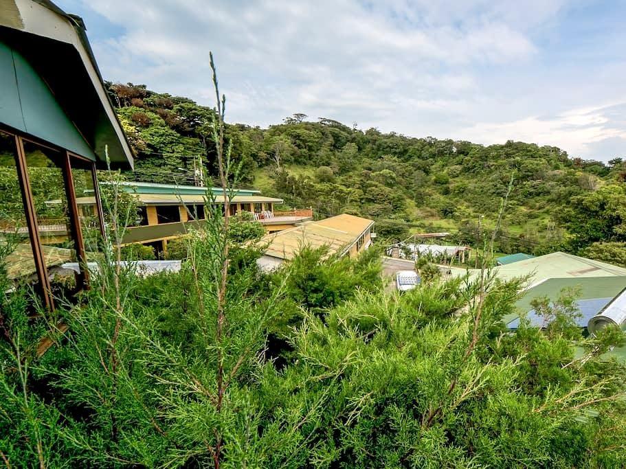 Monteverde Hotel Don Taco - Monteverde - Bed & Breakfast