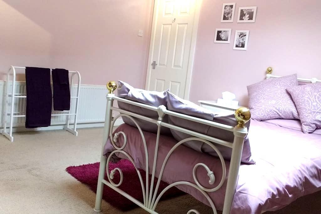 Charming Edwardian home single room - Sheffield - Huis