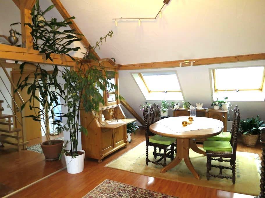 Ferienwohnung Roswitha in Blieskastel-Biesingen - Blieskastel - Apartamento