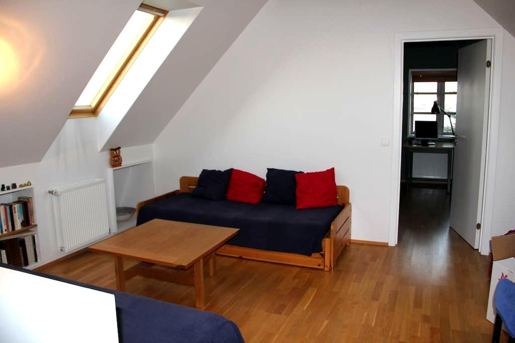 One bedroom and an open space - Garðabær - House