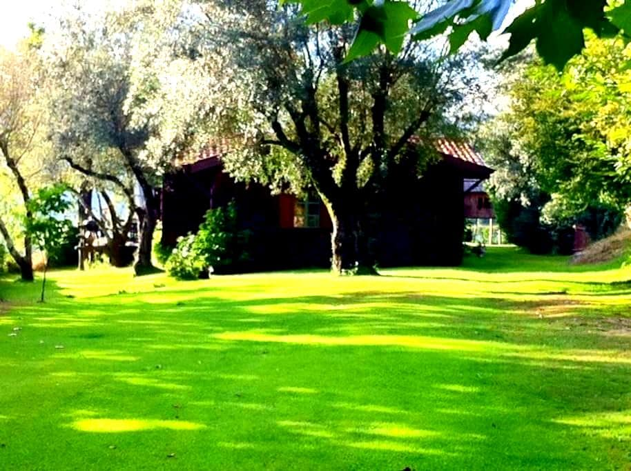 Country House Geres Gerês - Vieira do Minho Municipality - Villa
