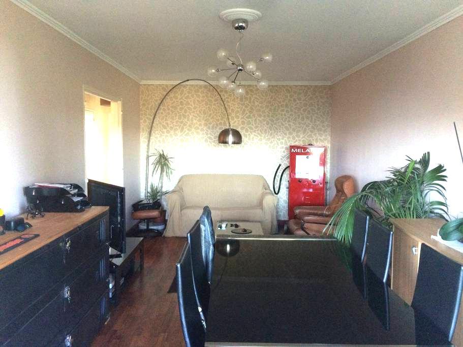 Appartement en bordure du cher - Tours - Flat