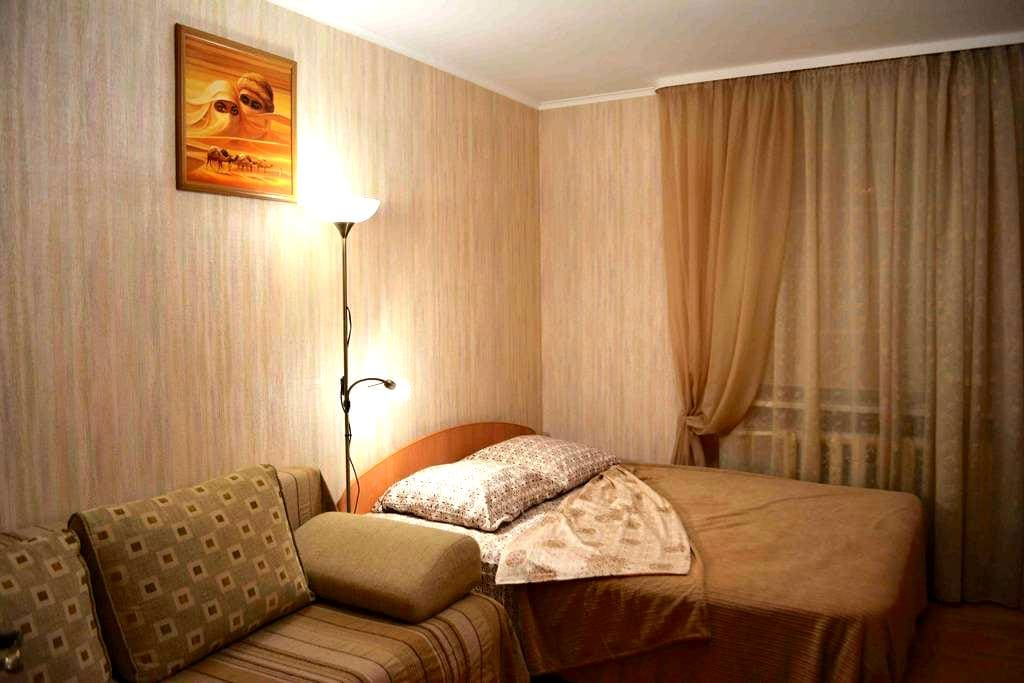 Уютная и функциональная в центре - Voronezh - Apartment