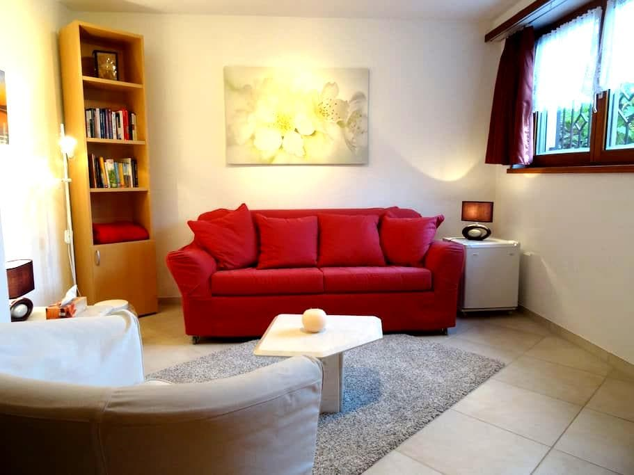 Small and cosy. Close to Zürich! - Bertschikon - Apartment