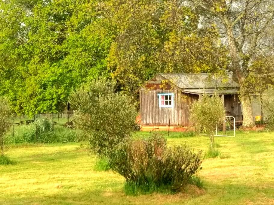 """The Cowboy Cabin"" - Tylden - Zomerhuis/Cottage"