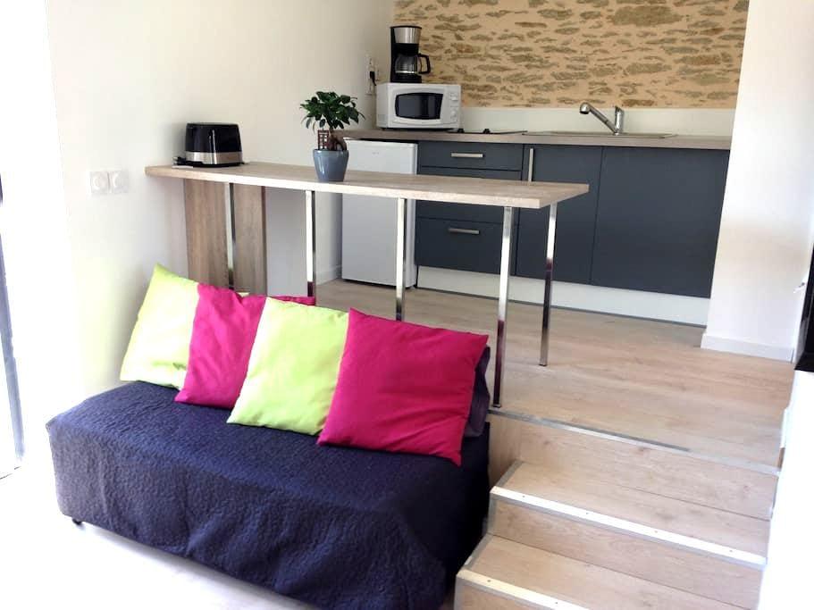 small house with small garden - Guérande - Casa