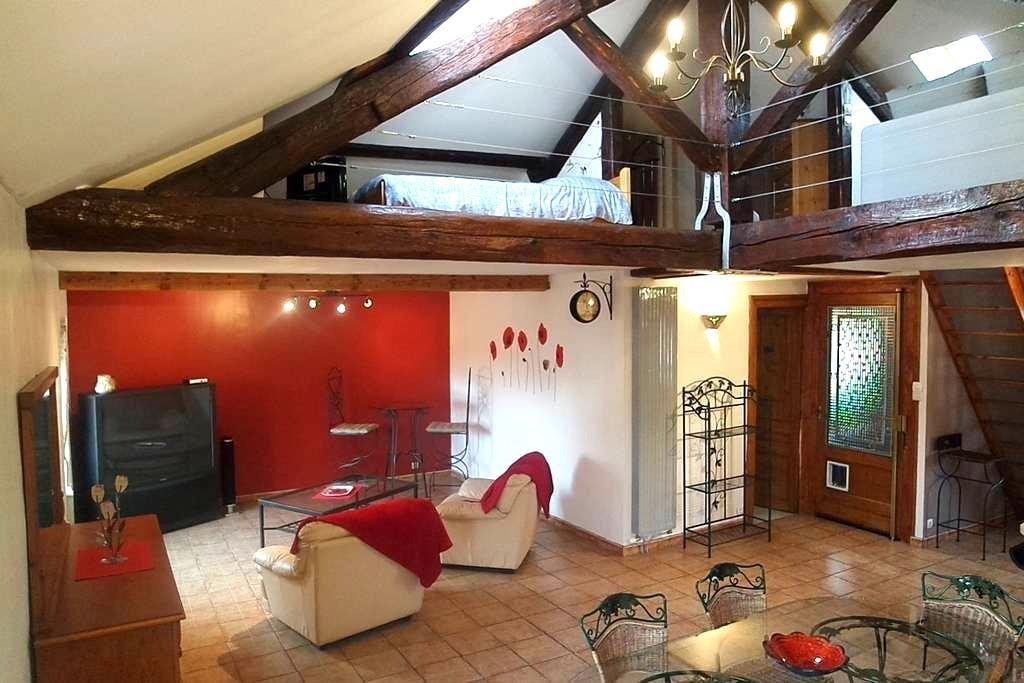 Loft portes de Lyon et du Beaujolais - Albigny-sur-Saône - Loft