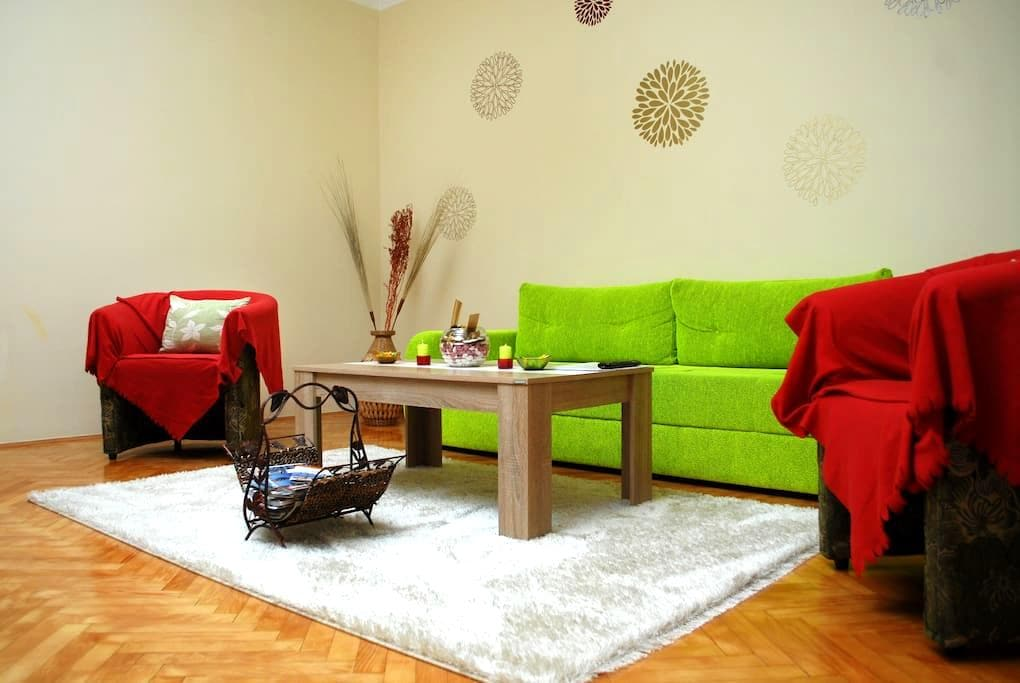 Comfy & quiet apartment- old Town - Sarajevo - Appartement
