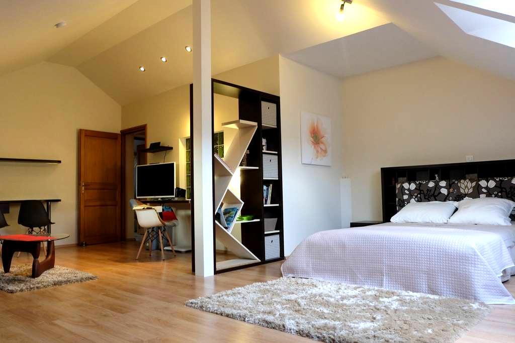 Grande chambre de 45m² - La Roche-des-Arnauds - Villa