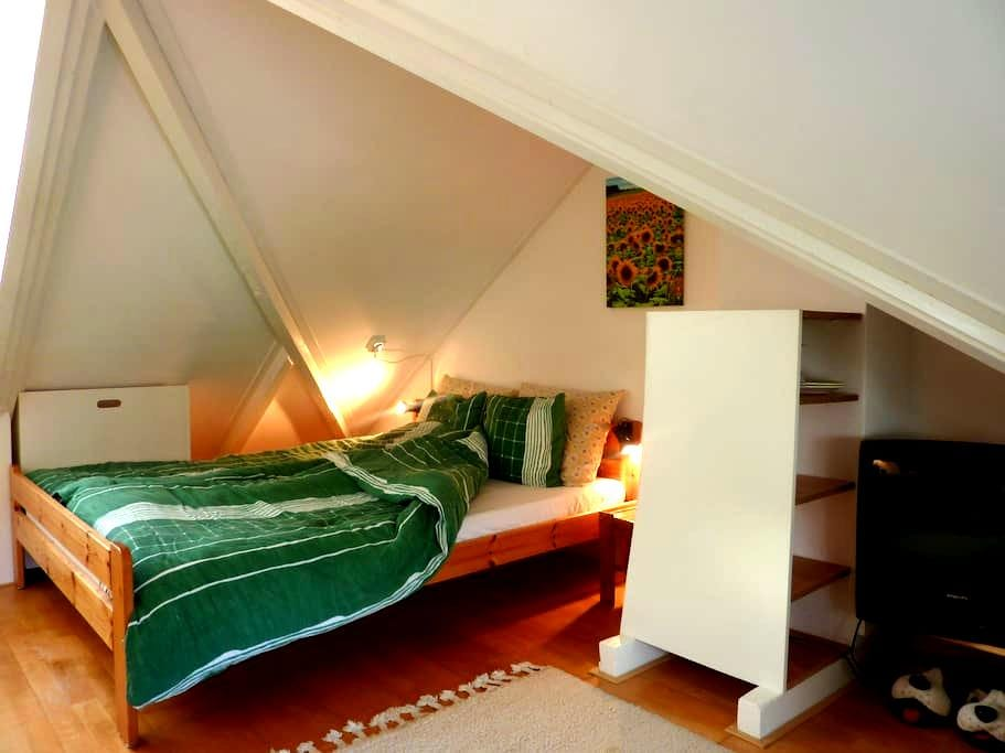Knusse complete kamer in Peize - Peize - Huis