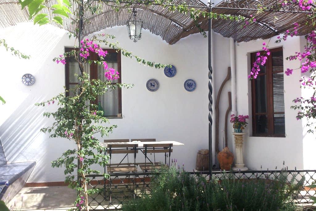 Acogedora planta baja con jardín - Palma - Hus