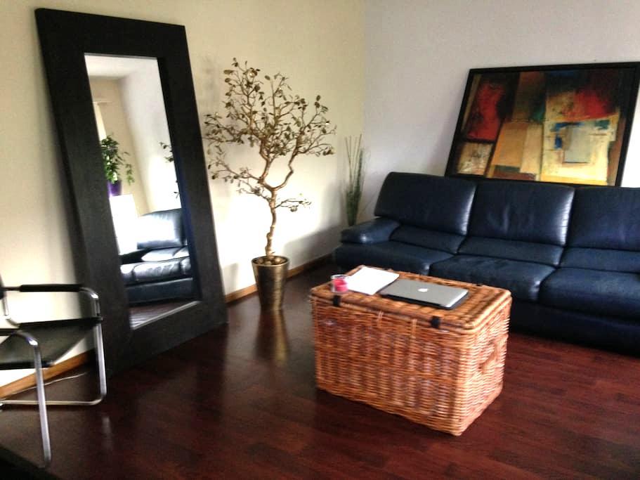 very nice apartment - Basel