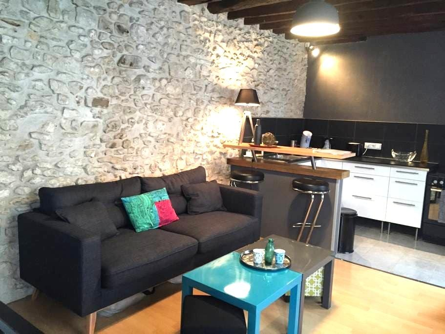 Lovely Cosy&Chic Duplex in Fonty - Fontainebleau - Huoneisto