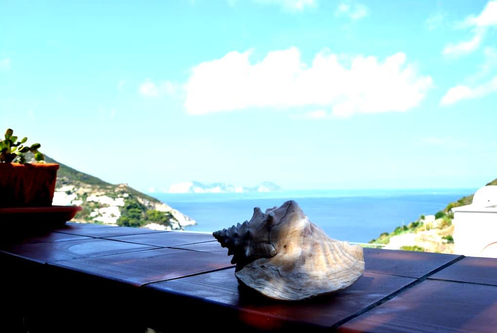 Monolocale Blu  Vista su Palmarola - Ponza