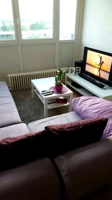 Chambre spacieuse et ensoleillée - Wattignies - Apartment