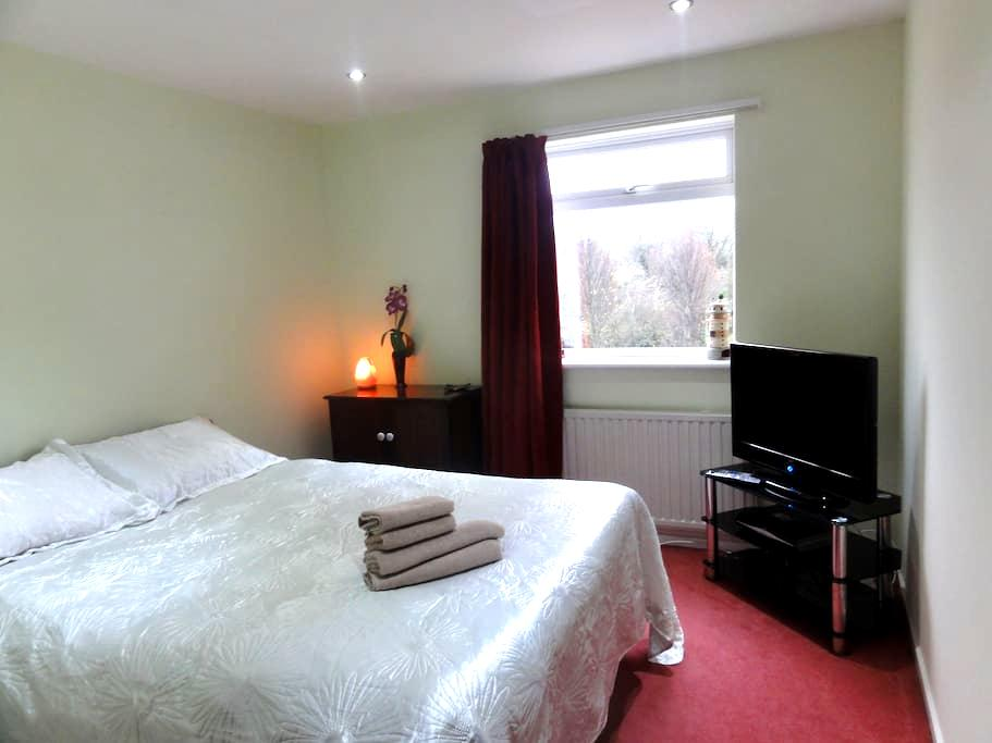 Cosy room in a friendly house with  Sky TV - Bristol - House