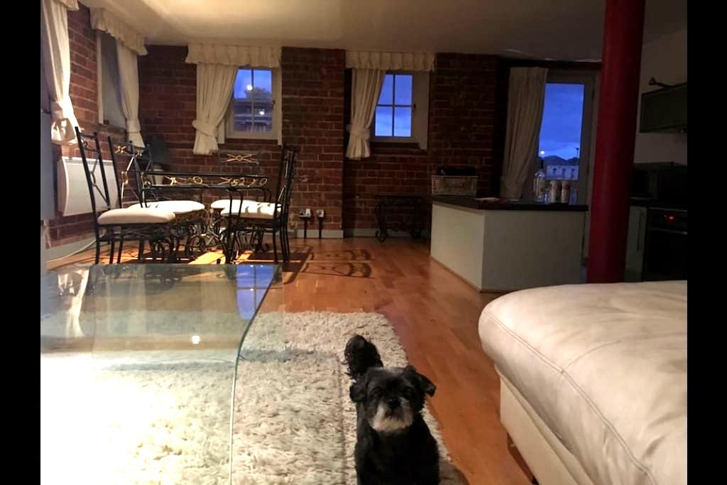 Stunning Loft Style Docks Apartment - Gloucester - Apartment