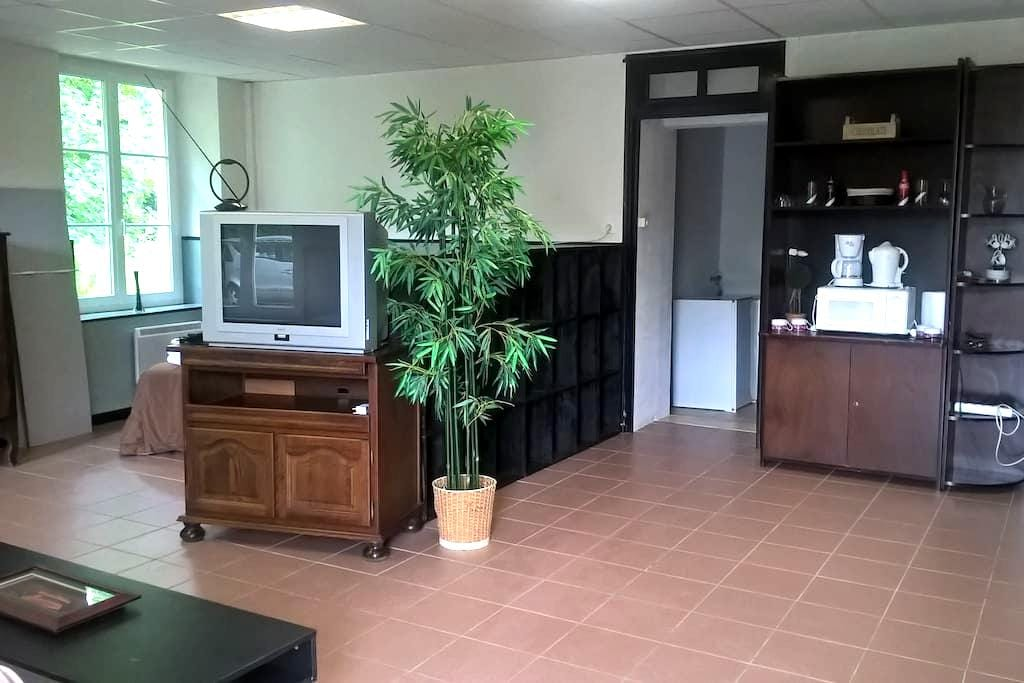 Studio au calme de la campagne - Brains-sur-Gée - Lejlighed