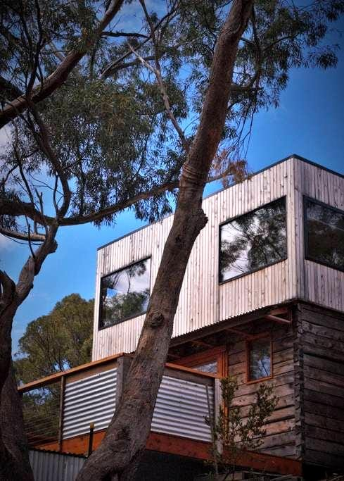 Treetop escape in central Hobart - South Hobart - Haus
