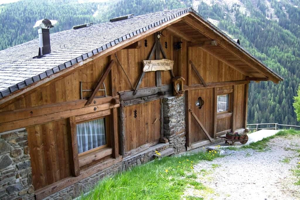 Mas del Toni  Chalet di Montagna  - Rabbi - Cabin
