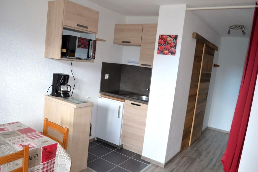 Joli appartement remis à neuf parking vélos, wifi. - Les Carroz Arâches-la-Frasse - Apartamento