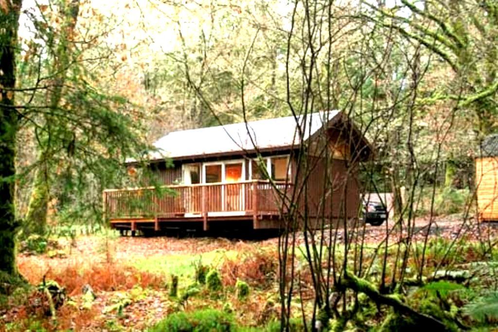 Cosy log cabin in the woods. - Dalavich