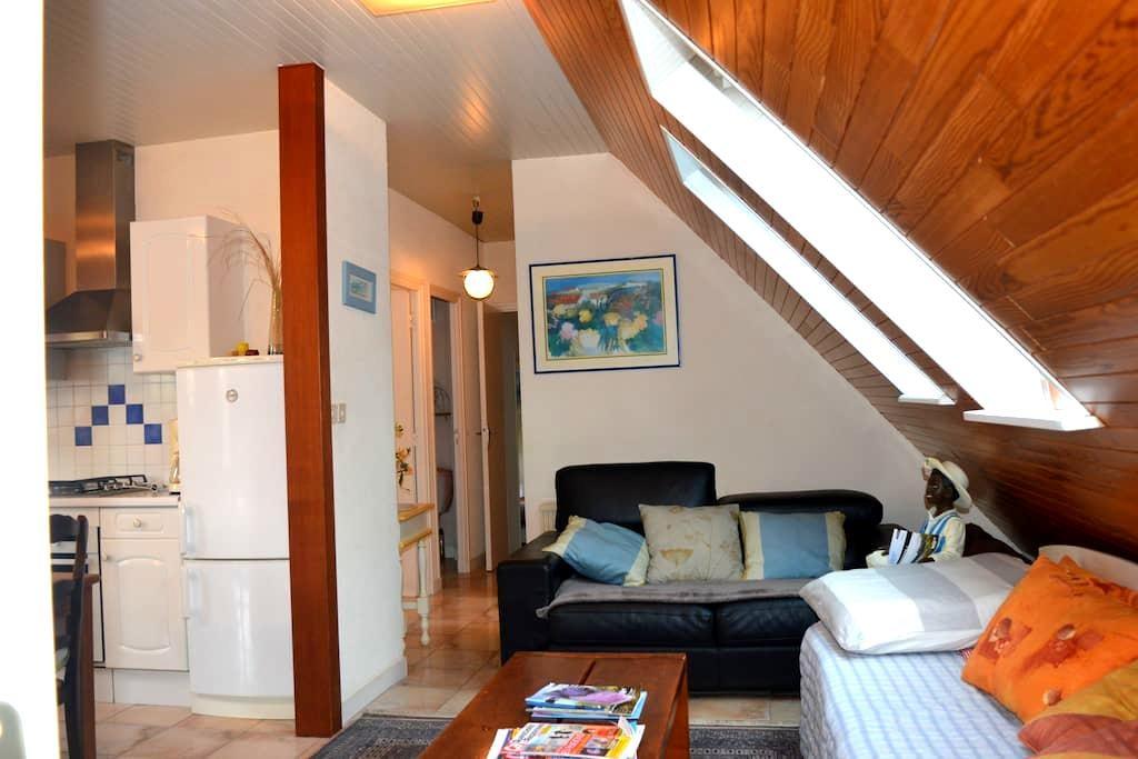 Appartement  lumineux 75m2 Confort, accès privé - Guiclan - Leilighet