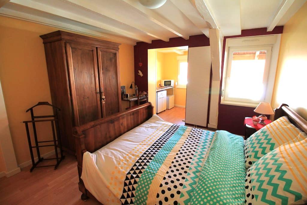 La chambre aux hirondelles à 10 mn de Strasbourg - Ittenheim