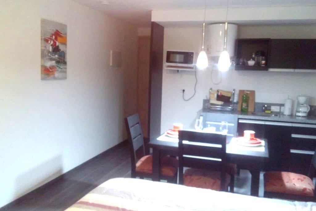 Punta Carretas Studio estrena 05/2016 - Montevideo - Apartment