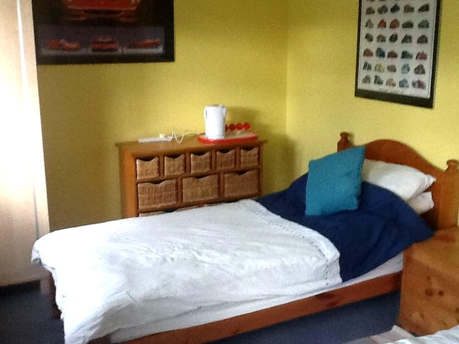 Large Twin  New  Additional Room - Hertfordshire - House
