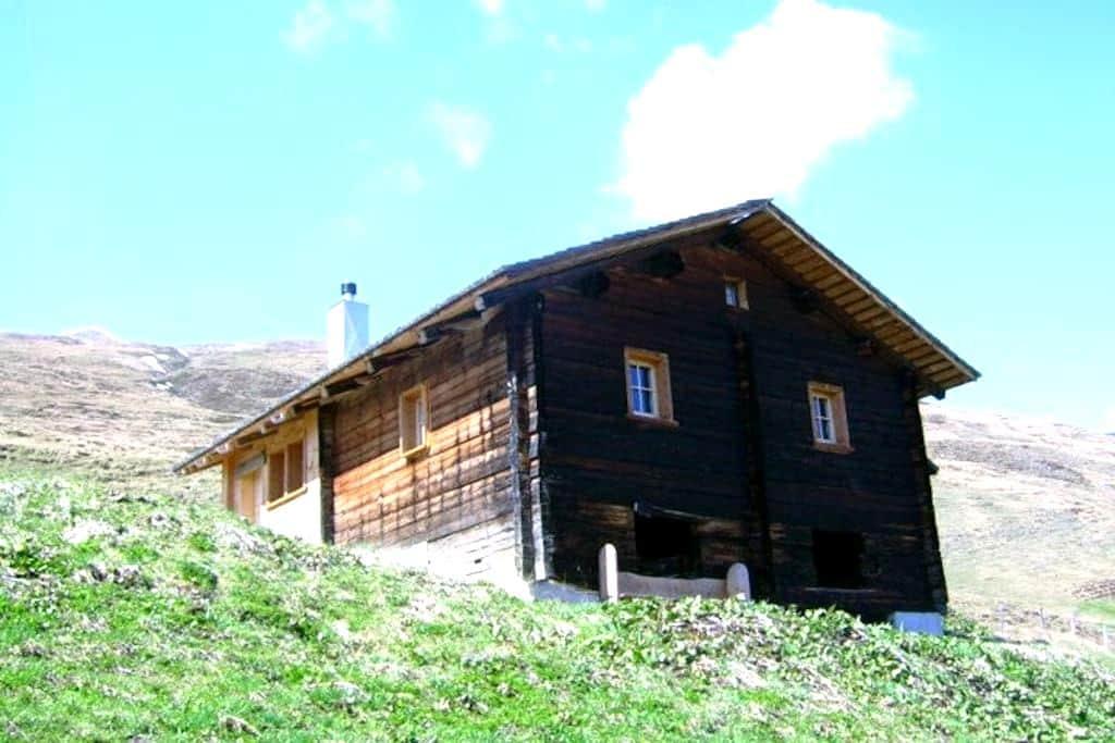 Maiensäss Litzihütta, Camaner Alp - Safien