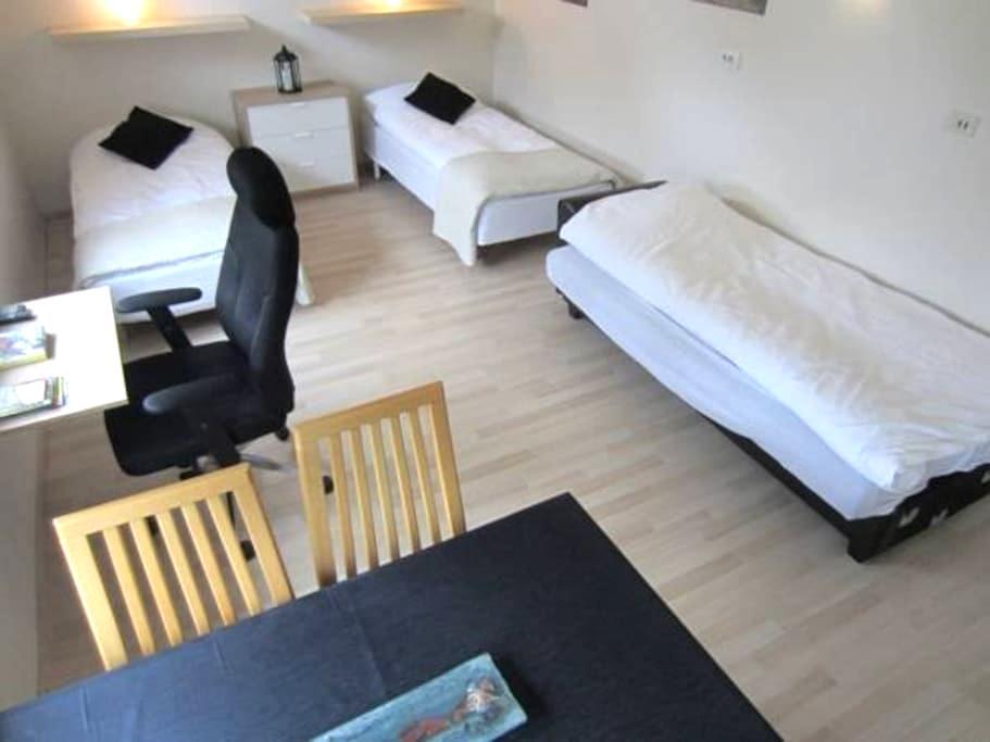 Eghomestay, 3 person studio apartment - Hvolsvöllur - Bed & Breakfast