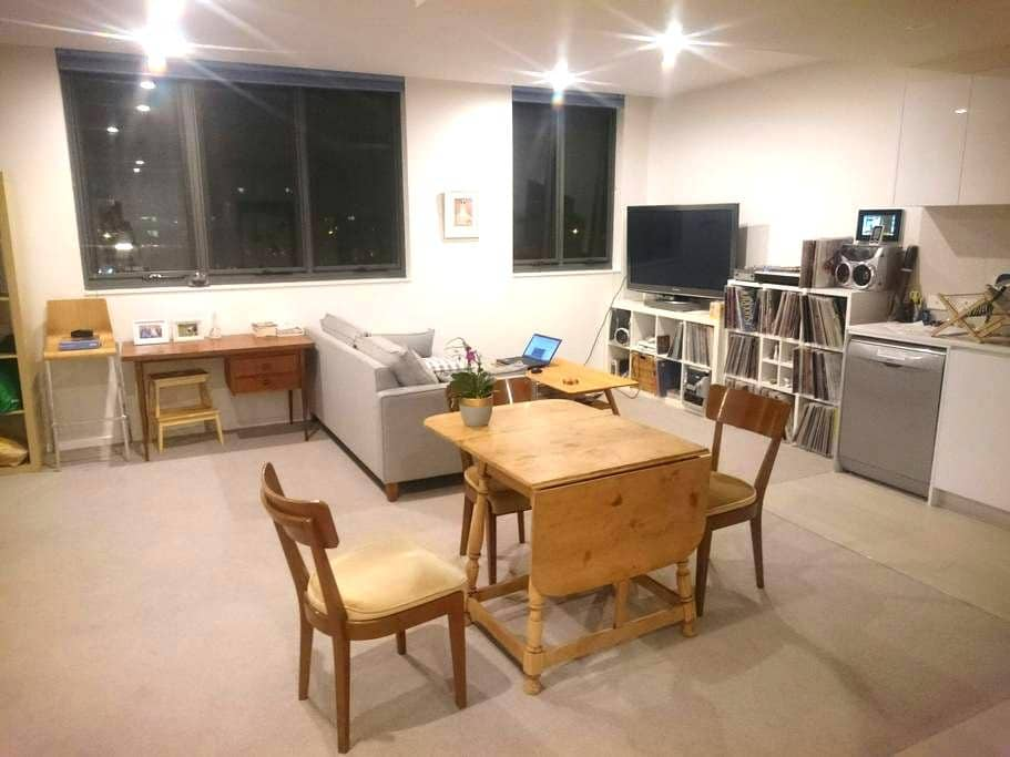 Large, Bright 1 Bedroom Apartment - Braddon - Byt