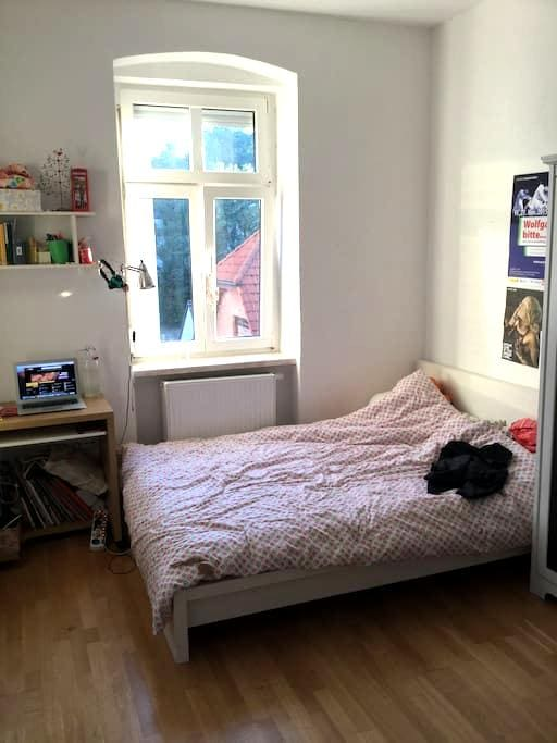 Cosy room in heart of Linz - Linz - Apartment